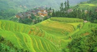Individuele rondreizen China