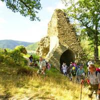 Altenahr Burg Are