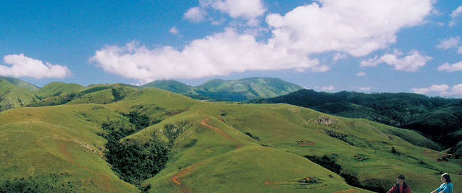 Swaziland Foresters Arms Mountains