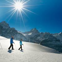 Snowshoeing Grindelwald by Jungfrau Region Mattias Nutt