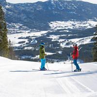 Twee skiers - overzicht Hemsedal