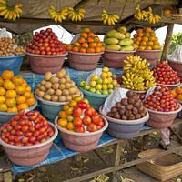 Fruitkraampje