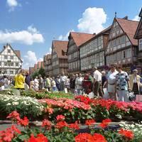 Geranienmarkt Celle