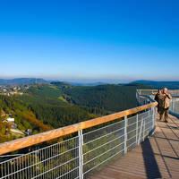 Panoramabrug Winterberg