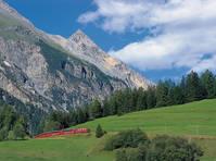 Bernina Express met de Zwitserse bergen