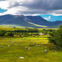 Connemara landschap