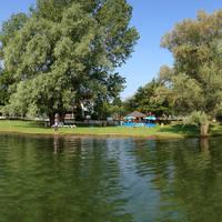 Ligweide aan het meer