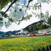 6-daagse treinrondreis Glacier Express