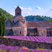 Busreizen 10-daagse busreis Provence in Avignon (Provence, Frankrijk)