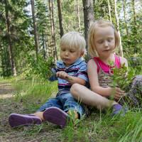 Besjes plukken in het bos