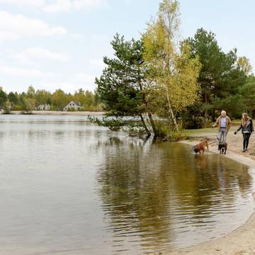 Omgeving Sunparks Kempense Meren
