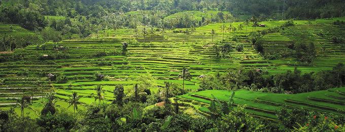 Maatwerk reizen Indonesië