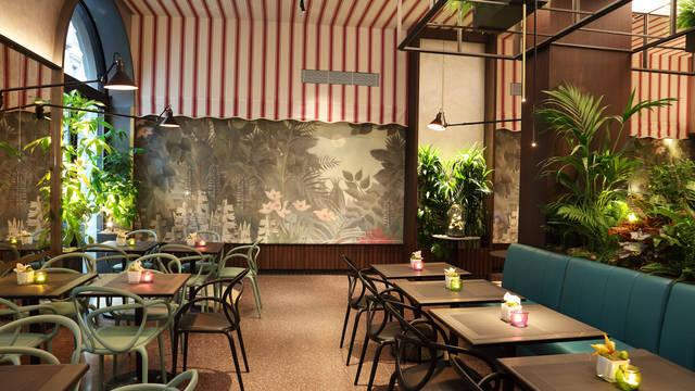 Gorilla's bar Hotel Sanpi