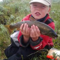 Skeikampen vissen