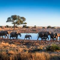 16 daagse avontuurlijke groepsrondreis inclusief vliegreis Avontuurlijk Namibië (standaard accomm