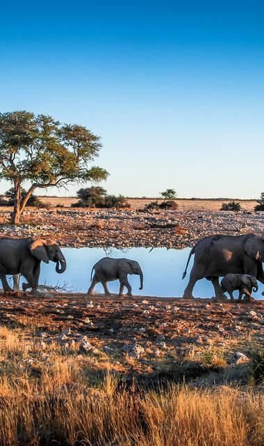 Avontuurlijke groepsrondreis - inclusief vliegreis Avontuurlijk Namibië (kampeer accomodaties)