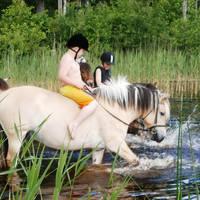 Paardrijden in het water