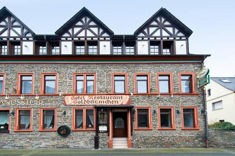 Last minute vakantie Rheinland Pfalz 🚗️Hotel Ellenzer Goldbäumchen