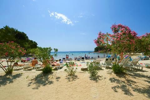 Vakantiedeal bungalow Dalmatië 🏕️Pine Beach Adriatic Eco Resort