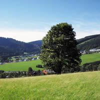 8-daagse busreis, Winterberg Sauerland