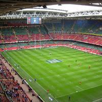 Millennium stadion