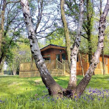Bluewood 3 Bluewood Lodges