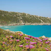 8-daagse autorondreis Ontdek Sardinië