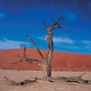 Zandduin in Namibië