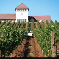King Estate Winery