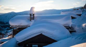 Sneeuwszeker - - Foto: Sverre F. Hjørnevik